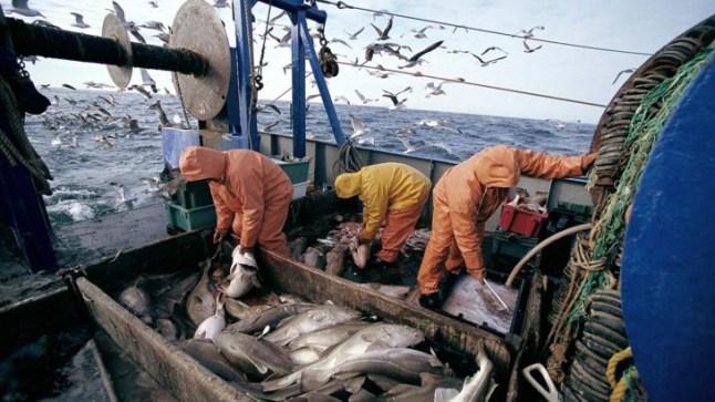 المغرب يرخص لأسطول مكون من عشر سفن روسية الصيد في المياه المغربية