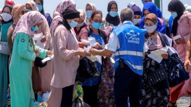 رغم معاناتهن لأشهر من الحصار.. آلاف المغربيات يعدن لحقول الفراولة الإسبانية طلبا للقوت