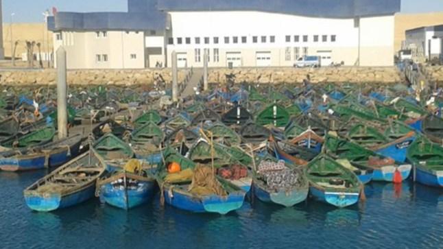 أين إدارة المكتب الوطني للصيد من تجاوزات مندوبها الجهوي وفوضاه بسوق السمك بميناء بوجدور؟