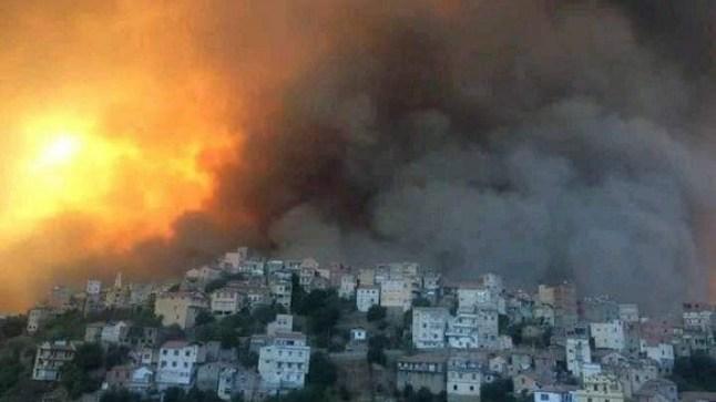 """الجزائر تعلن إخماد كافة الحرائق في ولاية """"تيزي وزو"""""""
