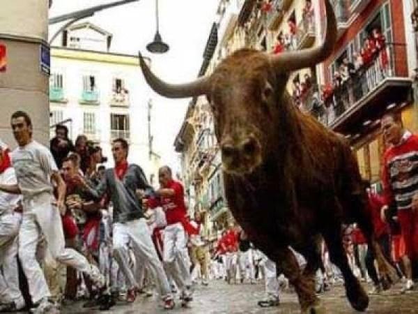 牛追い祭り