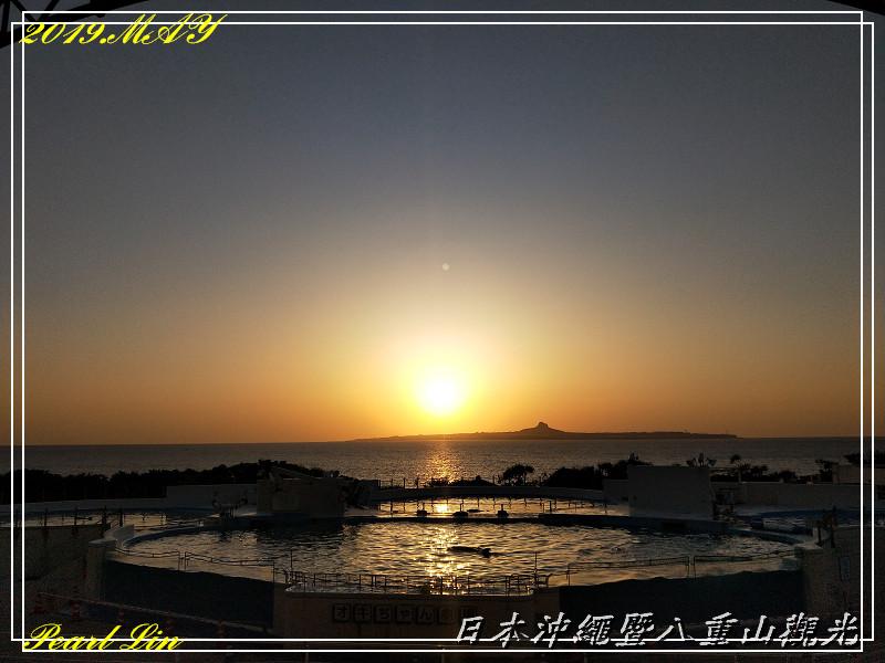 日本沖繩八之七   Pearl 愛作夢的魚