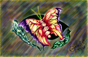 butterfly_wm