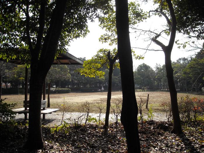 東沖緑地公園