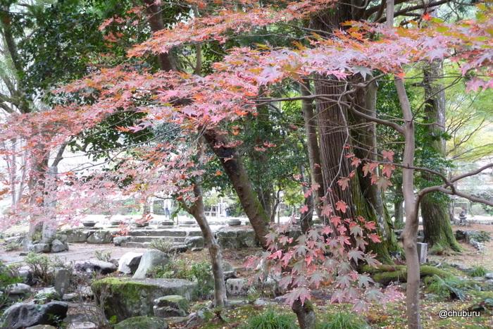 秋を探しに 大寧寺
