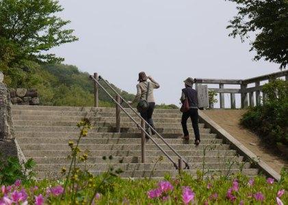 勝山地区公園(勝山御殿跡)