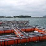 南風泊漁港