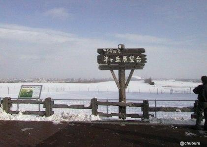 雨の日じゃないけどアルバムの整理をしてみよう。1999年社員旅行で行った北海道羊ケ丘展望台