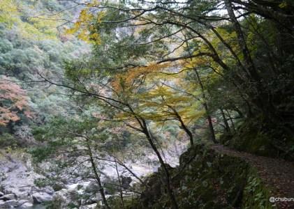 紅葉の長門峡に行ってきました。その2紅葉橋から茶屋まで