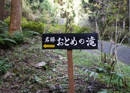 2017美祢市水神公園の紅葉を見てきました。
