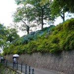 広島市植物公園へあじさいを見に行ってきました。その2あじさい