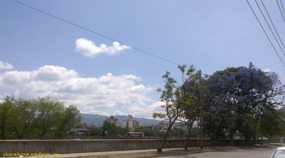 Foto0648-chuca