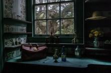 Dr. Marius Johnston's Apothecary - Plum Orchard Mansion