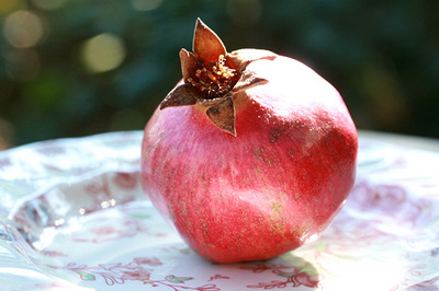 romã — pomegranate