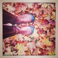 fall16_01