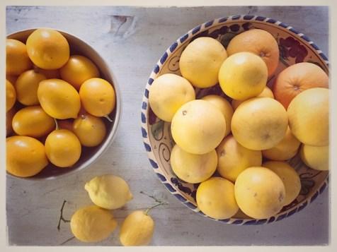limões & grapefruits