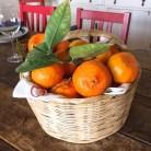 tangerinasKB