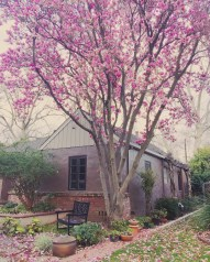 spring17_07