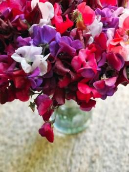 more_spring17_36