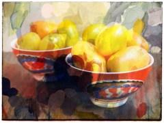 tomatos17_16
