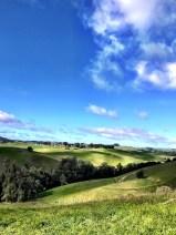 petaluma-trail_04