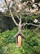 zen-garden_01