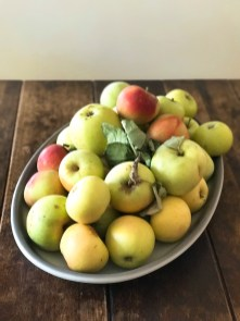 apples19_1