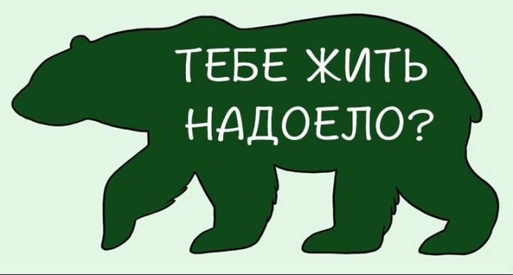 kak-nuzhno-gladit-zhivotnyx_8_1
