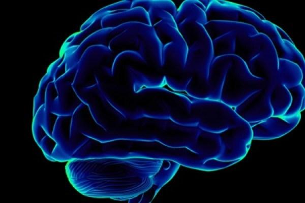 старение-головного-мозга