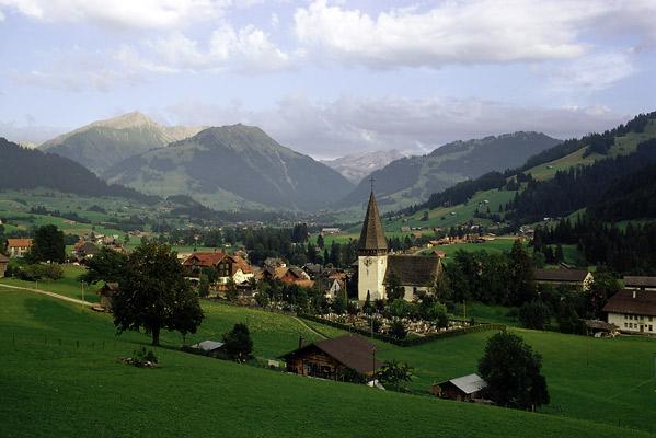 schweicaria