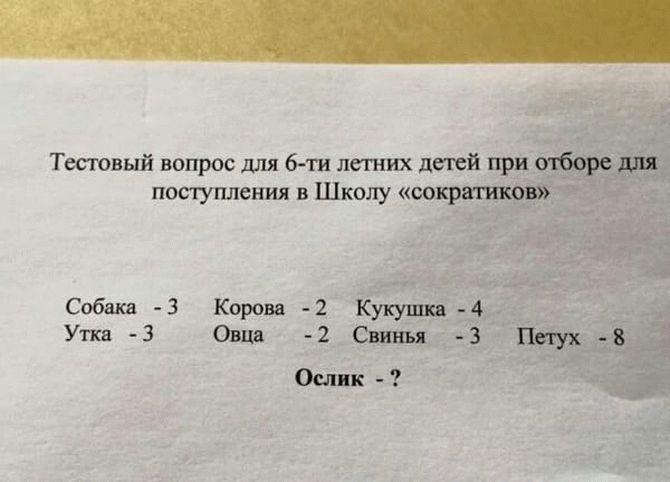 6_result