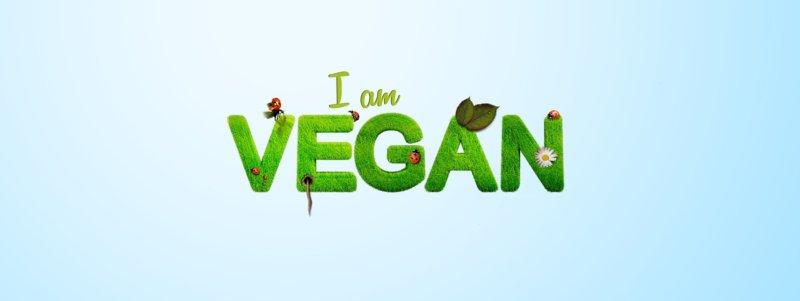 Atkinsonova diéta pre vegánov a vegetariánov