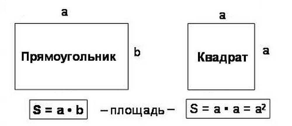 Как посчитать площадь прямоугольника в квадратных метрах