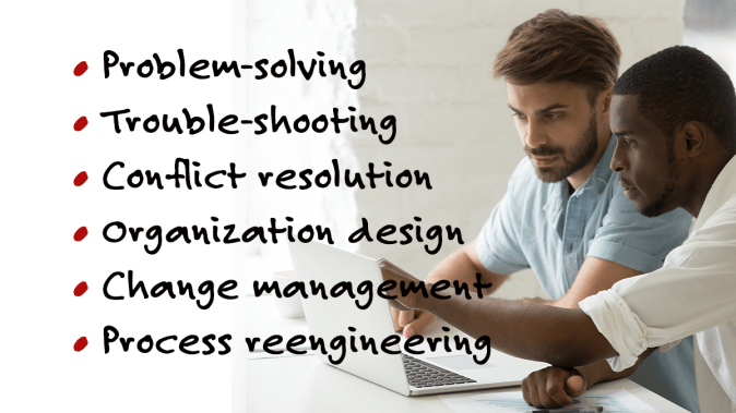 A bulleted list containing Problem-solving, torubles-hooting, conflict resolution organization design, change management, and process reengineering to the left of an image of a black and white guys working on a laptop computer.