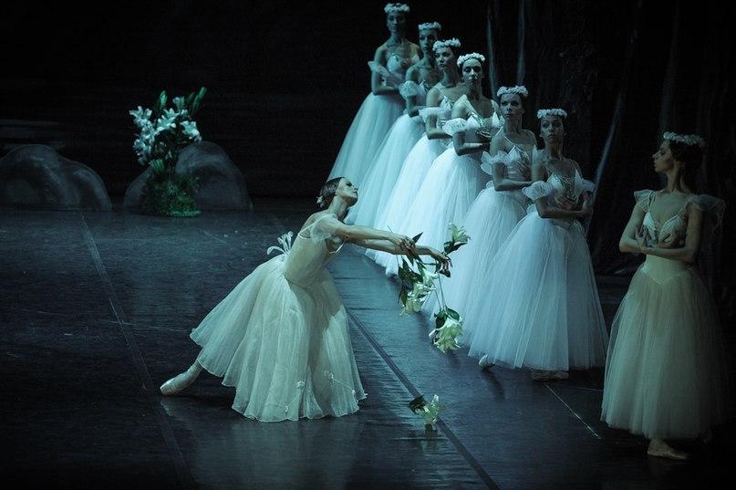 """lasylphidedubolchoi: """" Mikhailovsky's Giselle Photo by Marc Olich """""""