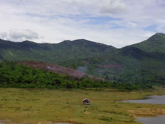 Lều canh nuôi cá và phá rừng