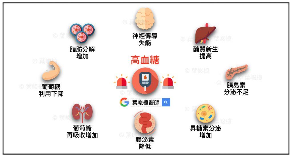 《糖尿病》Ominous Octet by Prof. DeFronzo ~ 高血糖致病機轉 ️ 新陳代謝. 糖尿病. 醫學   葉峻榳醫師