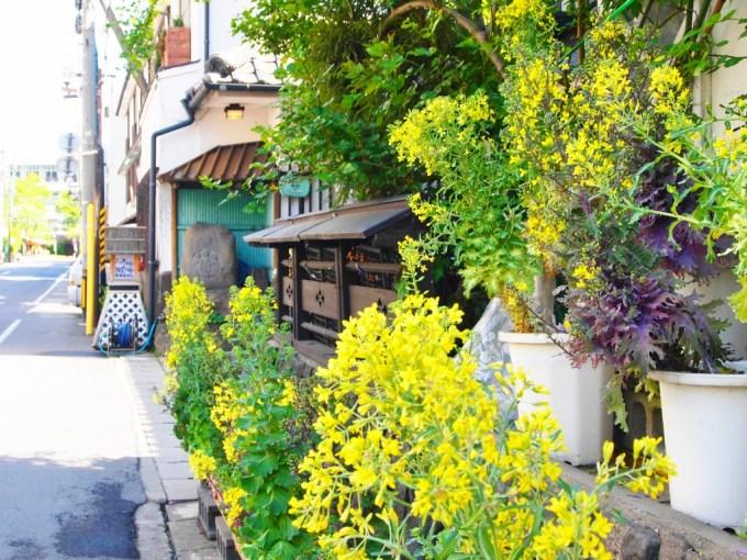 戸倉上山田温泉中央ホテル菜の花