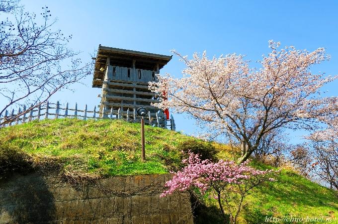 戸倉上山田温泉荒砥城桜