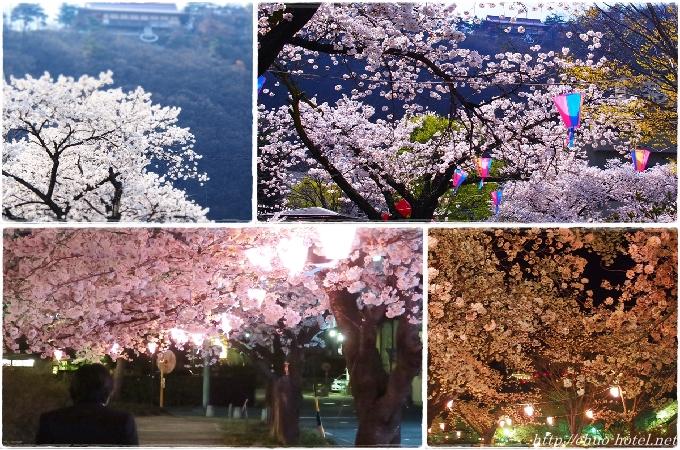 戸倉上山田温泉中央公園おかみの会お花見