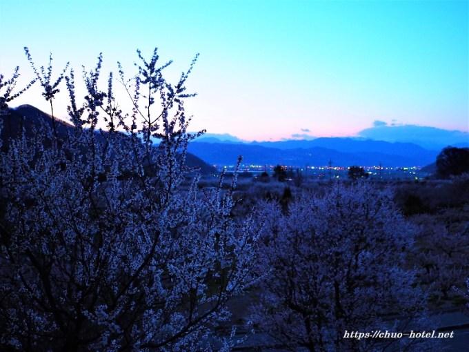 千曲市あんずの里夕景夜景