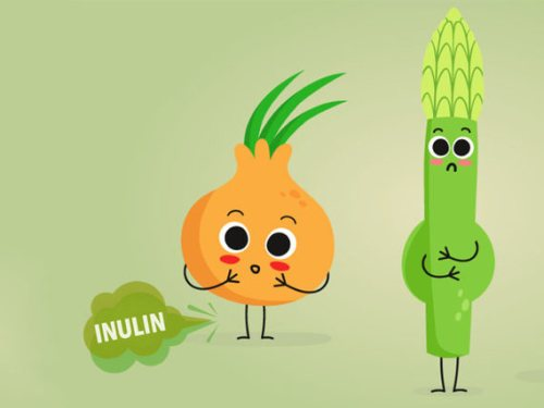 chất inulin trong sữa non tổ yến