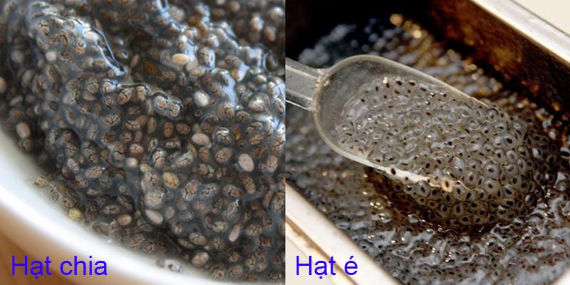 Phân biệt hạt chia giảm cân và hạt é