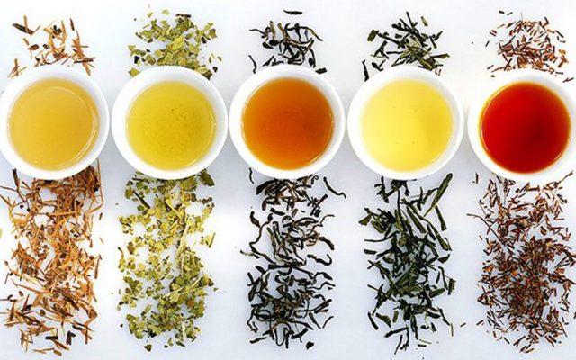 Uống trà gì giảm cân nhanh nhất