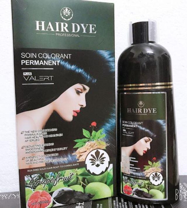 Dầu gội phủ bạc Hair Dye
