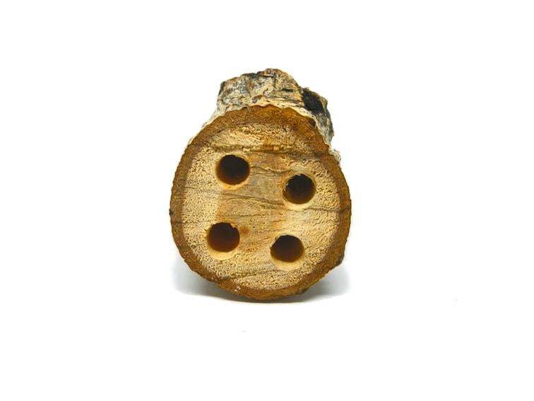 tocon de madera con agujeros para hacer portalapiceros rustico