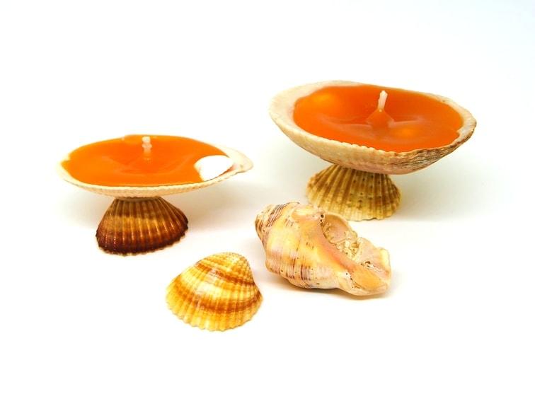 velas decorativas con conchas