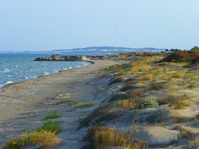 litoral y dunas moviles