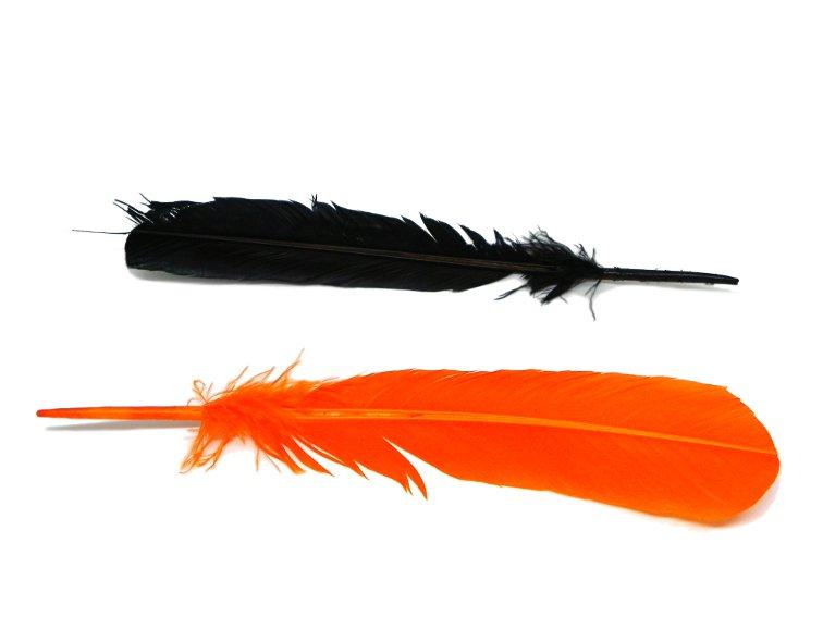 plumas para manualidades de colores para hacer plumas estilograficas caseras
