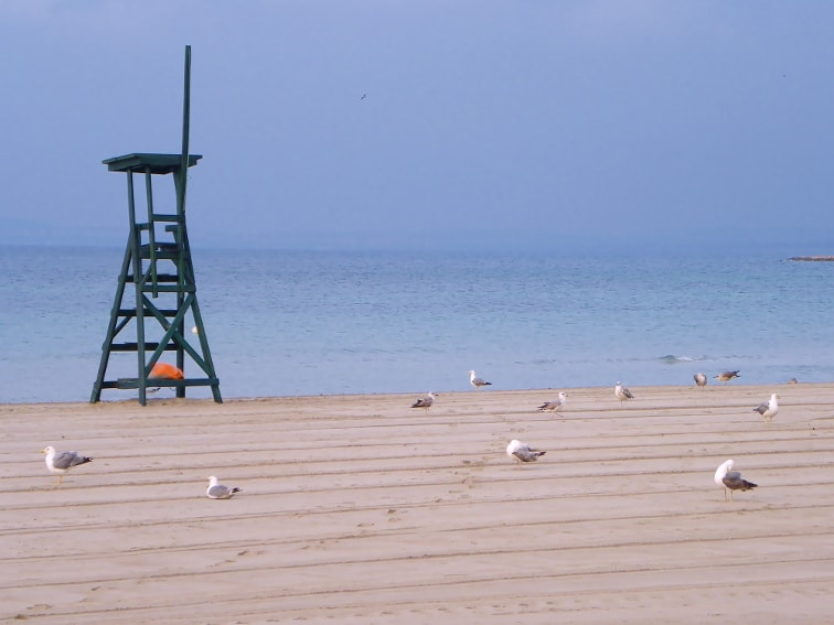 amanecer en la playa de levante en santa pola